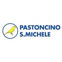 S.MICHELE