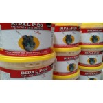 BIPAL P-20 PASTA CRIA MANUAL - Χυλός ταΐσματος νεοσσών - 5kg